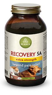 recovery_sa_uber