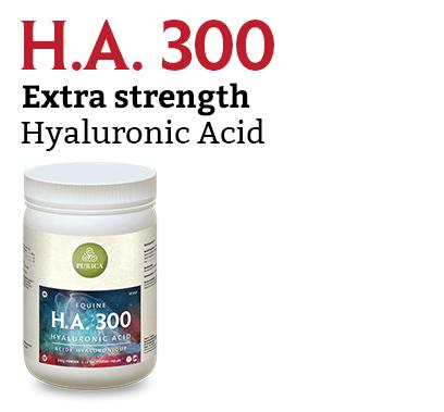 HA 300